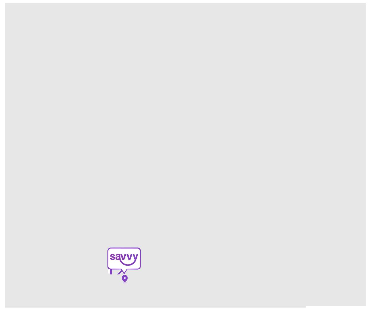 savvy technologies location map image